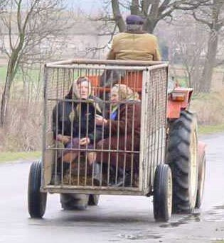 Unusual Transportation 18