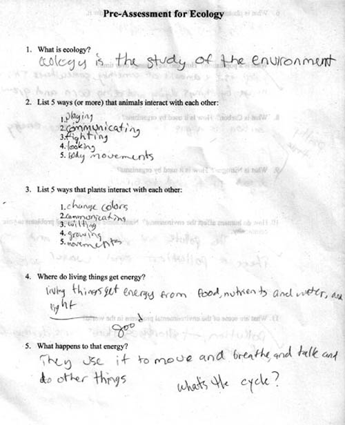 stupid or genius  be a smartass on school with funny answers